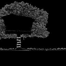 Treehouse Sanctum Logo